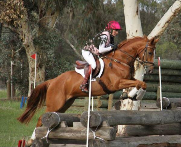 Alcoa CIC – Perth Performance Horses