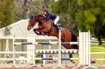 Swan River Championships